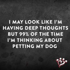 True and also sad, as my dog passed away in 2012 and I miss her like crazy.