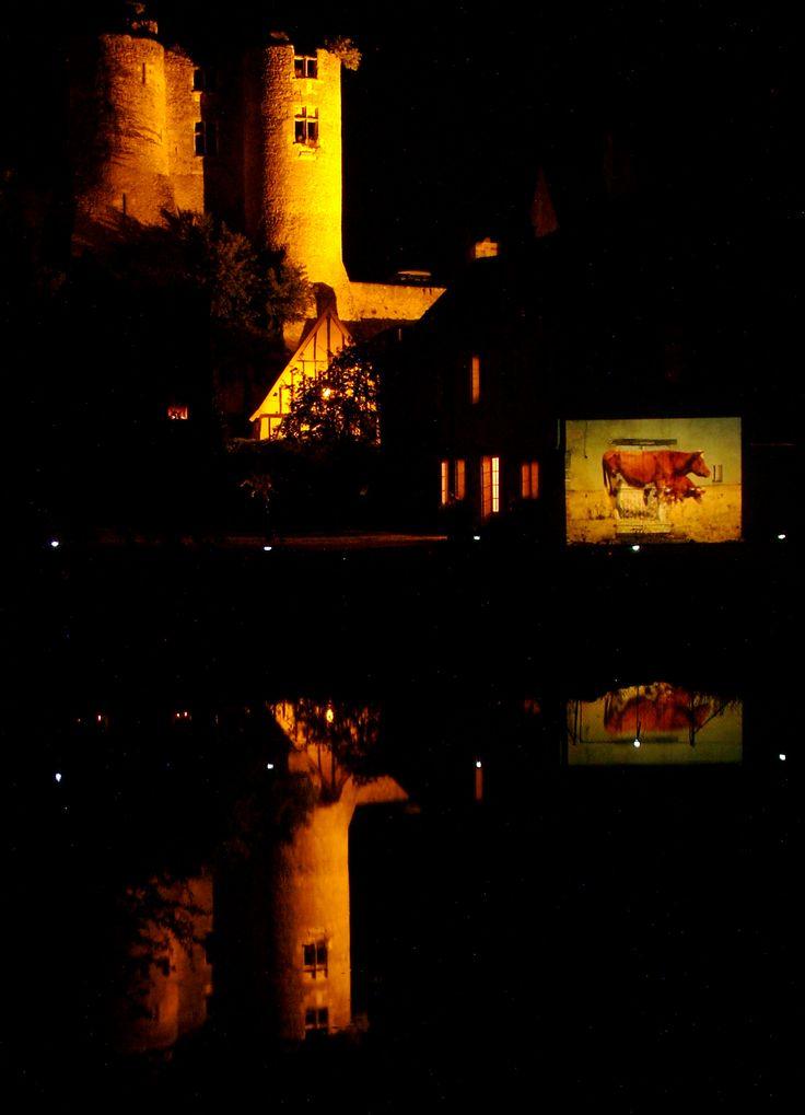 Nuits Solaires 2006 : la vache