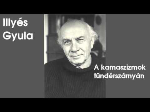 Illyés Gyula - A kamaszizmok tündérszárnyán (hangoskönyv) - YouTube