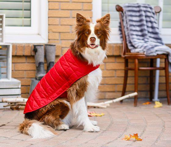 Bailey & Bella Quilted Blanket Coat Red