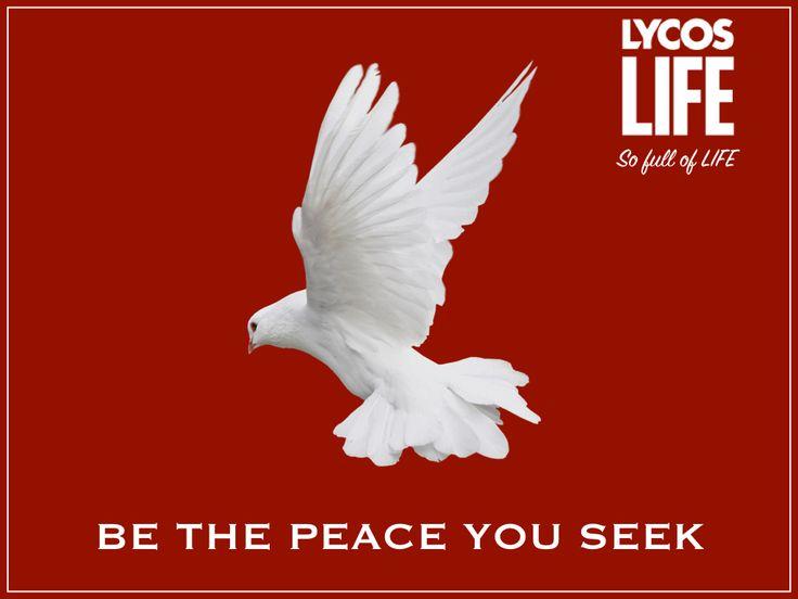 #peace #worldpeace #internationaldayofpeace #peaceful #lycos #lycoslife #world