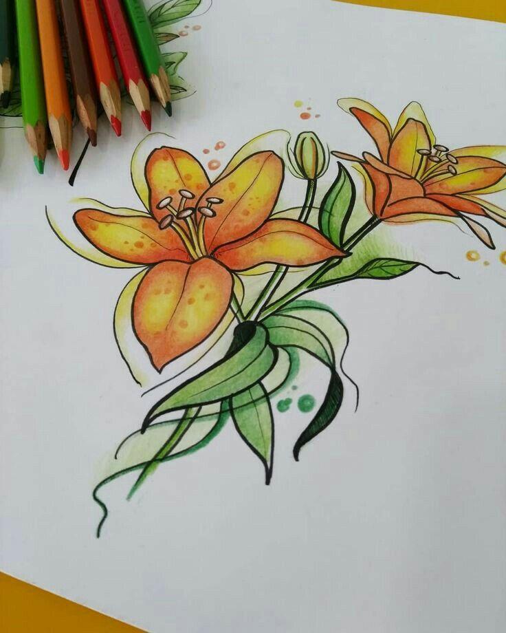 Pin De Lorraine En Drawings Dibujos Dibujos De Colores Dibujos