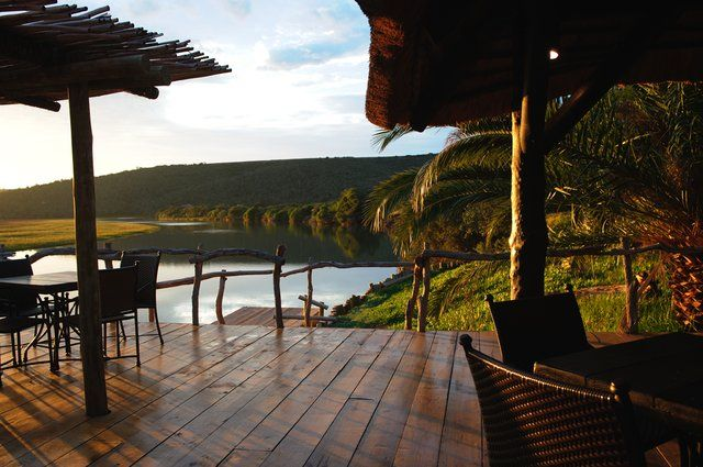 River Lodge at Kariega Game Reserve (another lodge we're looking at for our African Safari honeymoon!!)