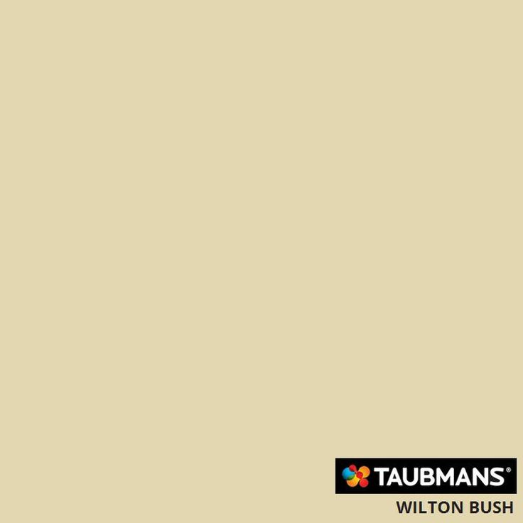 #Taubmanscolour #wiltonbush