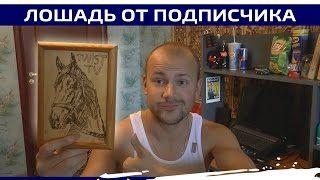 Смотреть онлайн видео PFS От Ильшата (Республика Башкортостан)