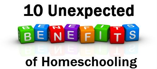 10 Unexpected Benefits of Homeschooling | The Holistic Homeschooler ()