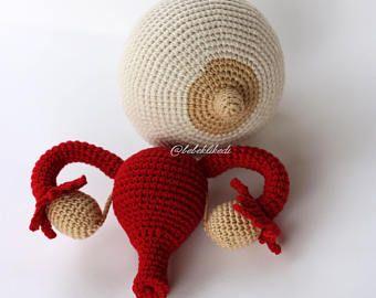 Handmade Breast & Uterus Model Together / Hand crocheted