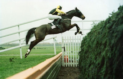 Earth Summit, winner of the 1998 Grand National.  Was desperate to win this one - my first National working at the bookies.  Earth Summit had the soft ground form and saw off the valiant Suny Bay in a quagmire.  One of my lasting memories is of a punter coming up to place a complicated ante post golf bet in the middle of the race.  Why?  Couldn't he wait?