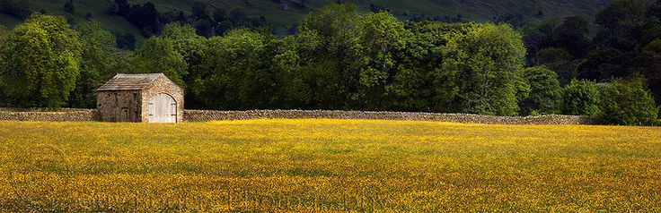 meadow lands single guys Topsoil meadow lands, pa topsoil meadow lands, pa has the best topsoil prices in meadow lands, pa.