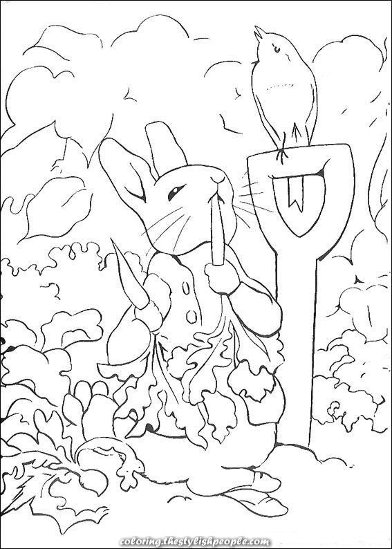 Terrific Coloring Pages By Peter Rabbit On Youngsters N Enjoyable Co Uk At Youngsters N Enjo Peter Rabbit And Friends Rabbit Colors Peter Rabbit Party