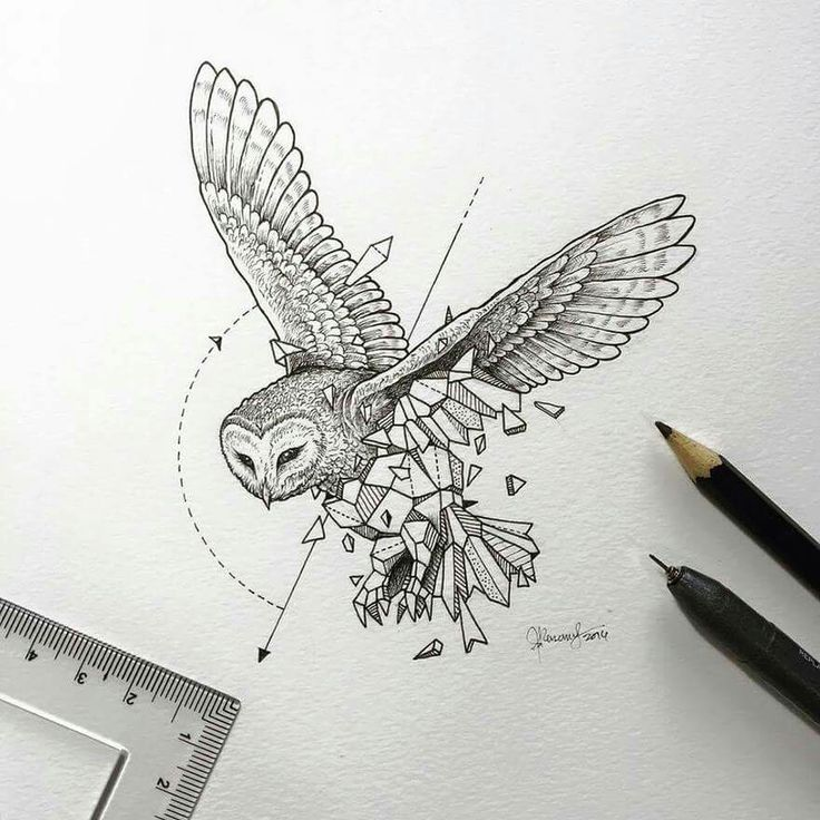 """Artist Kerby Rosanes aka Sketchy Stories created an intricate series of illustrations titled """"Geometric Beasts,"""" where animals seem to break out of their geometric bodies."""