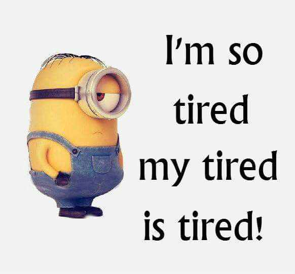 Funny I M Sleepy Meme : I m so tired my is minion ༺ respect the