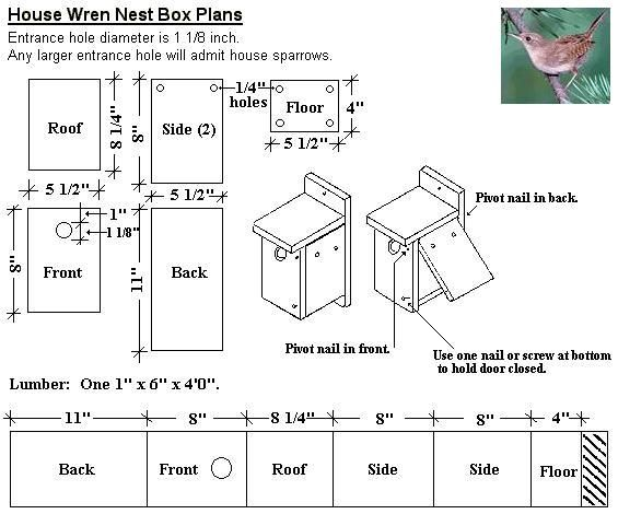 Best 25 Wren House Ideas On Pinterest Diy Birdhouse Bird House Plans And Rustic Bird Feeders