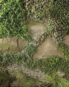 There are dozens of low ground covers and creeping perennials resilient enough to withstand being walked on.  Notice how much (or little) the pathway you're thinking of planting is used and choose the right perennial for your pathway.