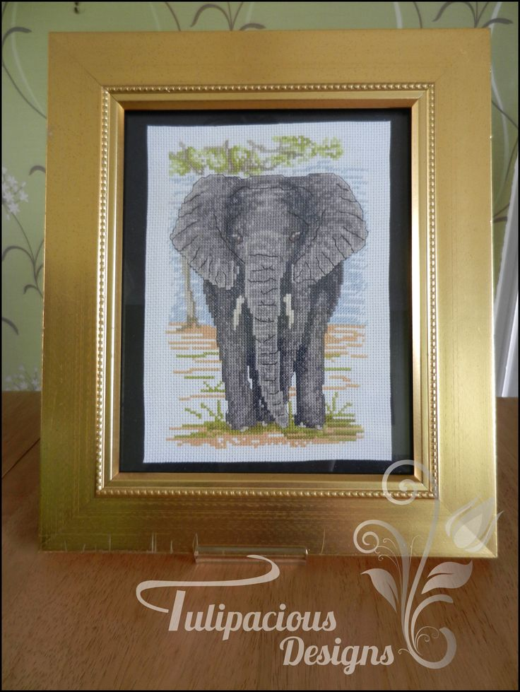 lovely grey elephant lovingly cross stitched and mounted into a glorious golden colour frame. Tulipacious Designs.