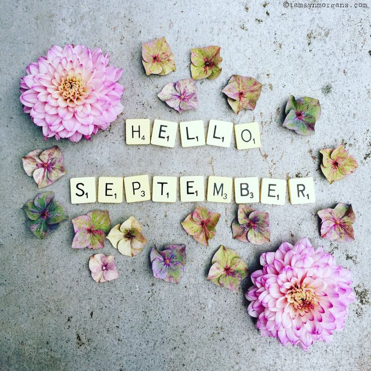 Hello September! Floral flatlay with scrabble letters