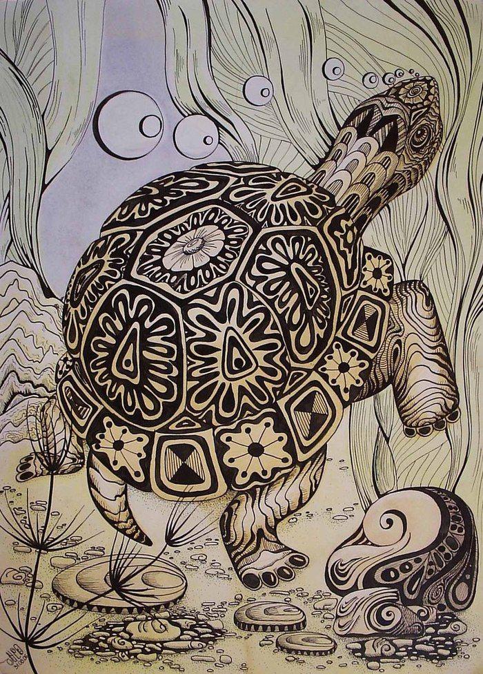 черепаха рисунок море / Main 583304 original