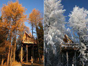 Scandinavian cabins: Tree top huts, Brumund, Norway