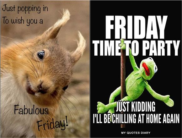 25 Hilarious Friday Memes That Perfectly Describe Your Feeling Fancy Ideas About Everything Friday Meme Funny Friday Memes Hilarious