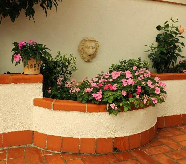 66 best images about plantas de sombra on pinterest for Plantas para patios