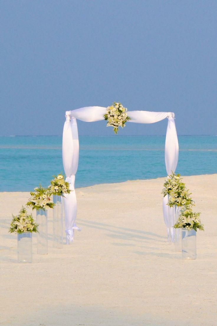 Wedding decorations to take abroad   best Para boda images on Pinterest  Weddings Babys breath