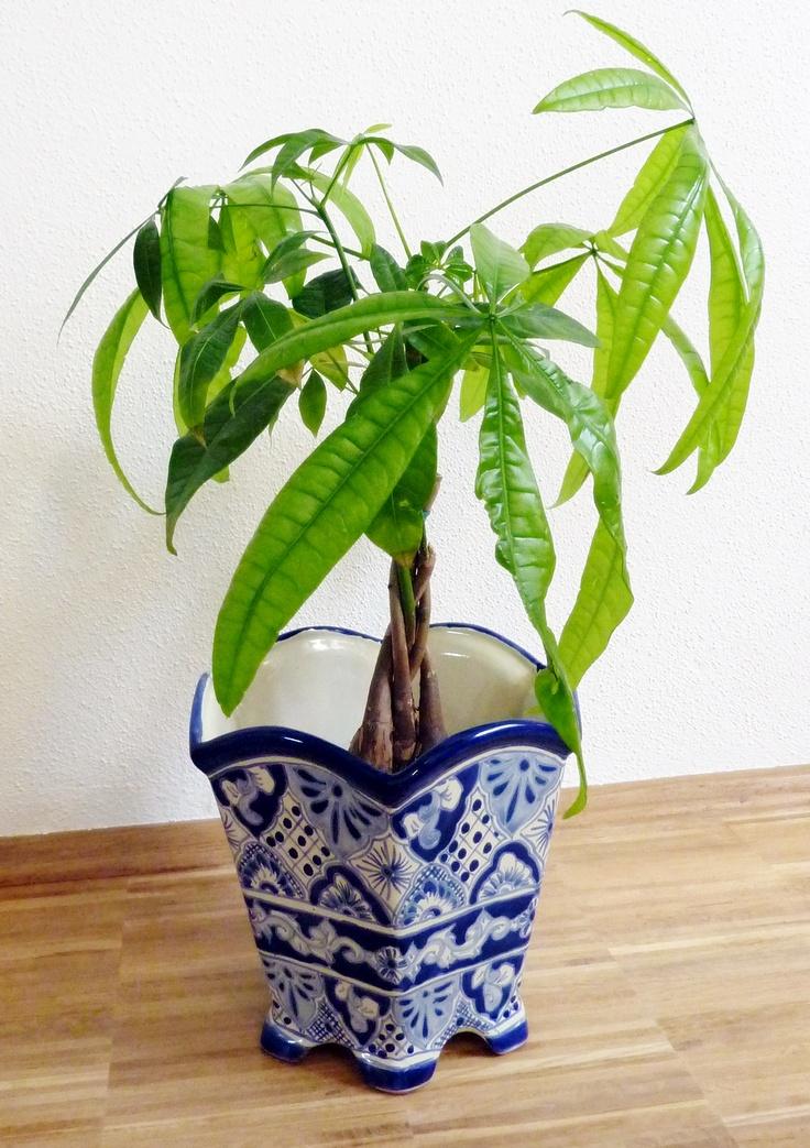 handbemalte blumen pflanzen bert pfe aus mexiko modell sechseckig talavera blau weiss www. Black Bedroom Furniture Sets. Home Design Ideas