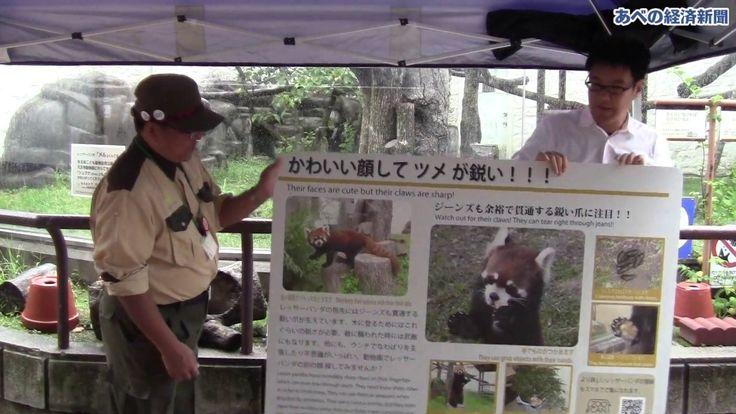 天王寺動物園 動物解説板をリニューアル - YouTube
