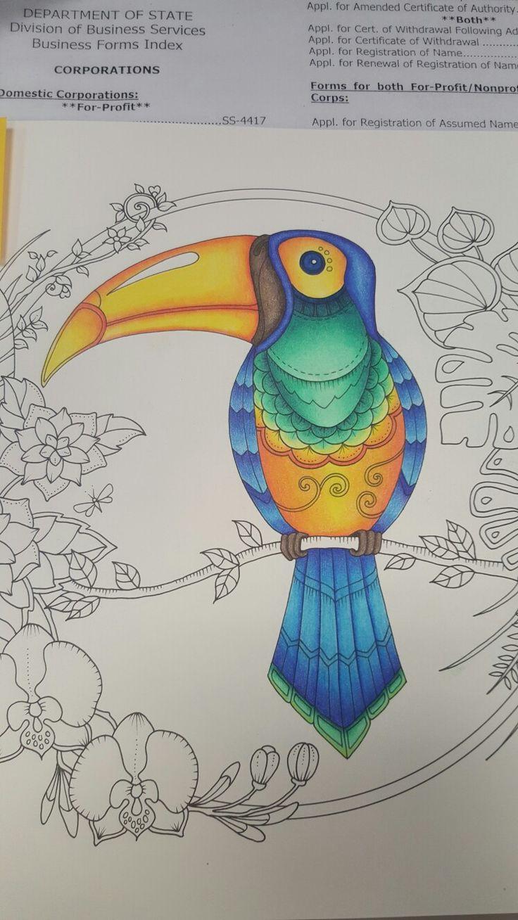 Toucan Magicaljungle Johannabrasford Davlinaartinspired Inspire Coloring