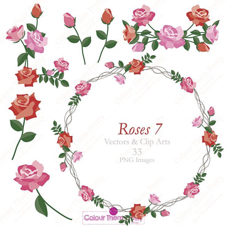 Roses 7 {Vectors and Clip Arts - Standard License}