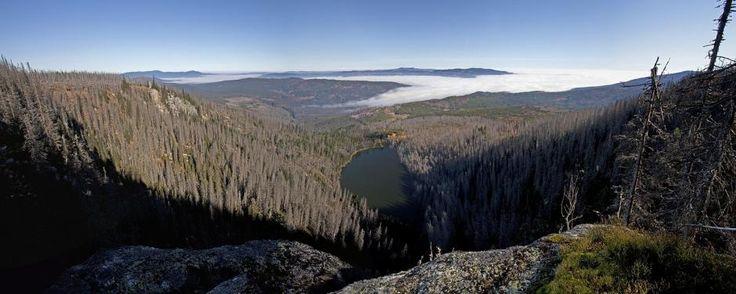 Šumava panoramatická   Vladislav Hošek
