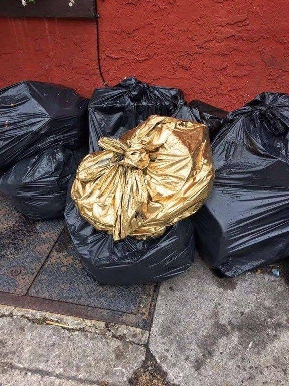 golden trash Buscar con Google Cosas, Memes