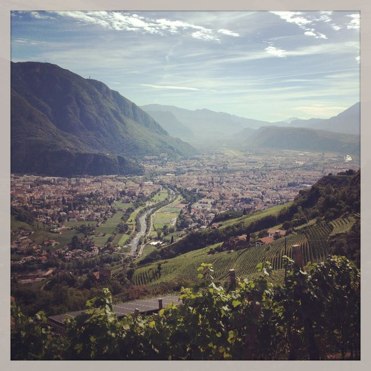 #Bolzano seen from the #vineyards of the hamlet #Sand on the hills above the town #Rottensteiner #winery #wine #winelovers #SouthTyrol