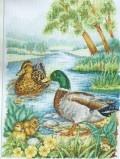 Утки на речке (вышивание крестиком)