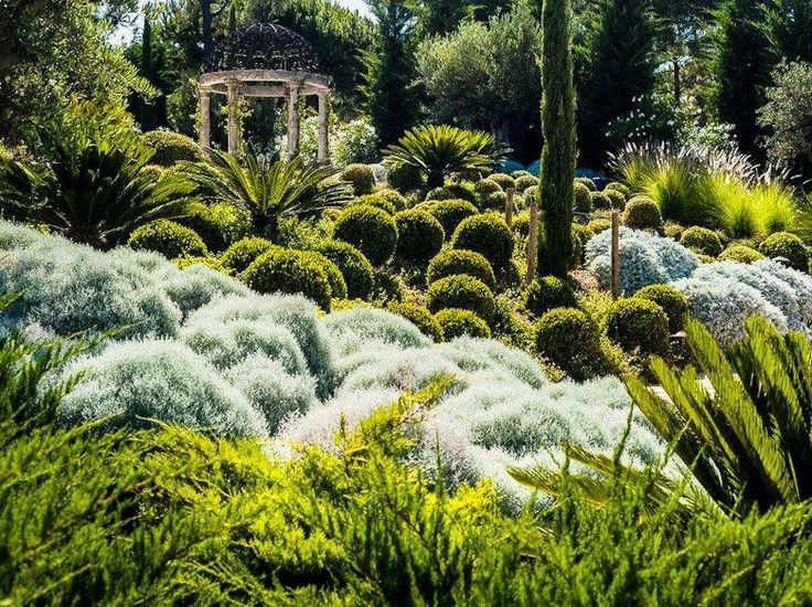 plantas jardim mediterraneo Jardim Mediterrâneo no Pinterest
