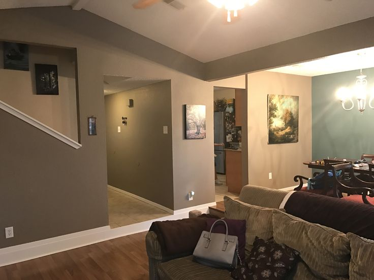 Sherwin Williams Quot Moth Wing Quot Walls Cabin Paint Colors