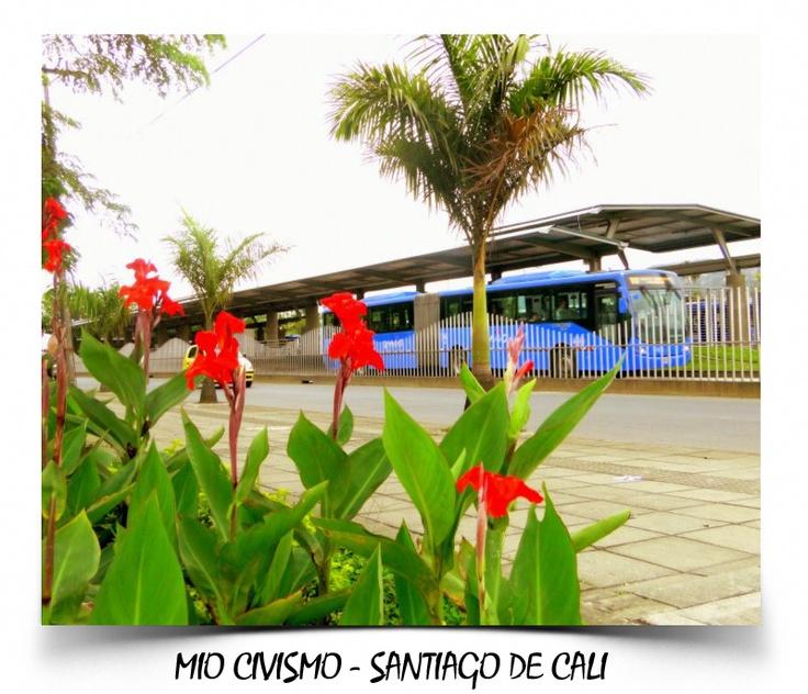 El Masivo Integrado de Occidente (MIO) es el sistema integrado de transporte…
