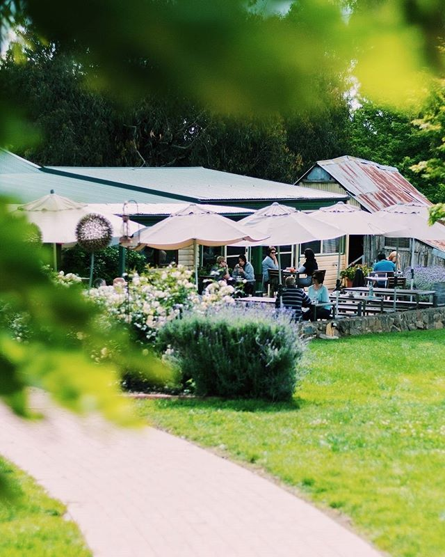 """Guest Instagrammer @_capitalgirl: """"Poachers Pantry has always been on my Canberra bucket list. The food is perfection and the grounds are lovely. It's a great little escape being only 25 minutes away!"""" #visitcanberra #localscan"""