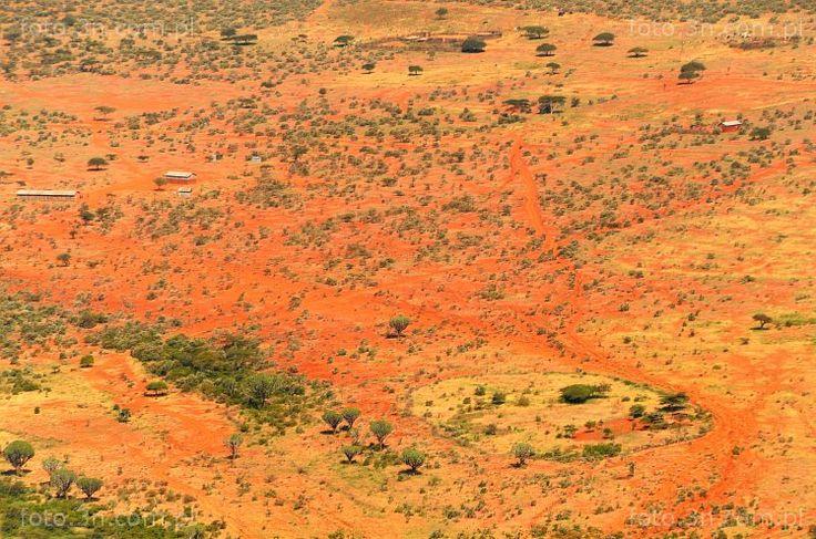 Africa - Kenya - bush - Great Rift Valley - foto.3n.com.pl - Internet Stock Photos