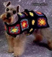 Cómo hacer un sueter para perros tejido - Buscar con Google