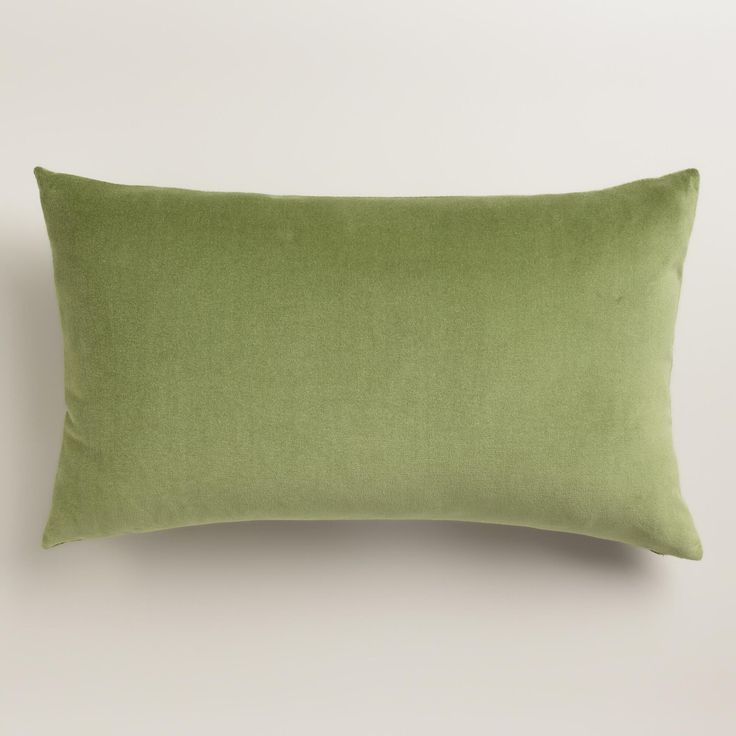 Iguana Green Velvet Lumbar Pillow | World Market: