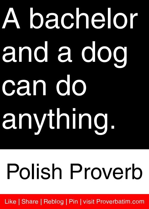 A bachelor and a dog can do anything. - Polish Proverb #proverbs #quotes