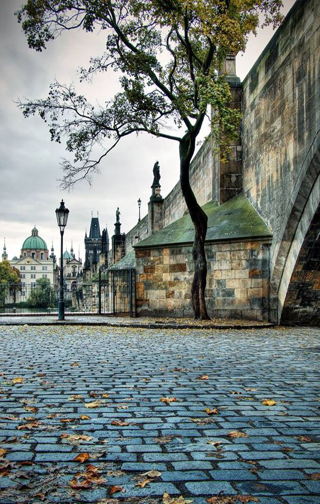 Autumn at Charles bridge, Prague, Czechia