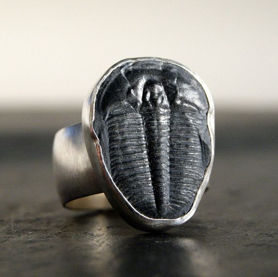 Dark Trilobite Fossil Ring in Sterling Silver by anatomi