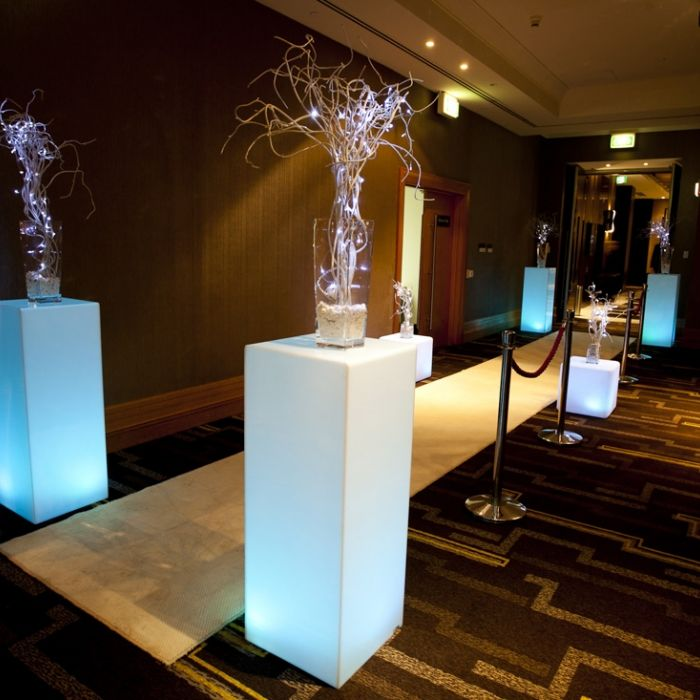 Centrepiece Gallery - Choose from Our Wide Selection | Phenomenon