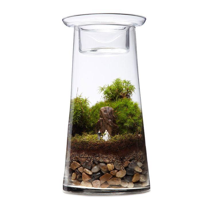 Our Wedding - Terrarium Centerpiece DIY Kit   succulent plants, votive candleholders   UncommonGoods