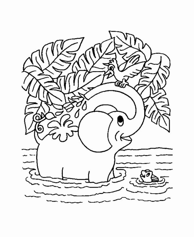 Coloring Pages Jungle Animals New Jungle Coloring Pages In 2020 Animal Coloring Pages Jungle Coloring Pages Elephant Coloring Page