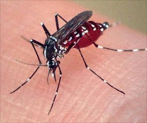 Over One Million People in Sub-Saharan Africa Contract Malaria Every Year Due to Dams