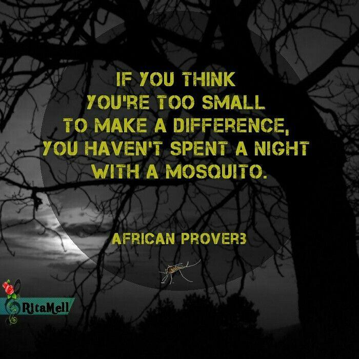 """""""If you think you're too small to make a difference you haven't spent a night with a mosquito"""" - AfricanProverb Se você pensa que é muito pequeno para fazer a diferença, você ainda não perdeu uma noite por causa de um mosquito. Provérbio Africano #MakeaDifference"""