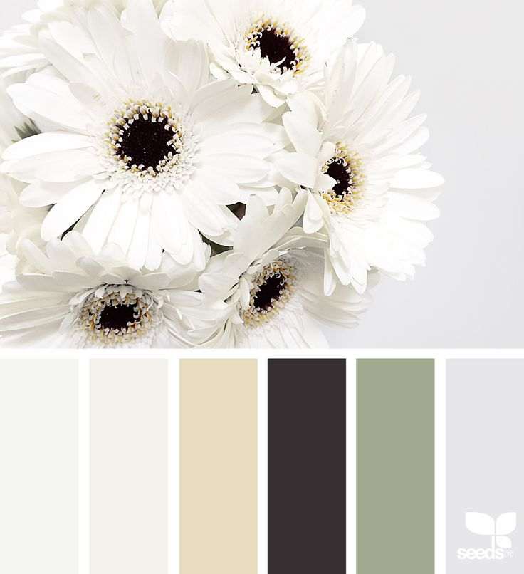 { flora tones } image via: @hannievanbreda  seedscolor #color #colorpalette #color #palette #pallet #colour #colourpalette #design #seeds #designseeds