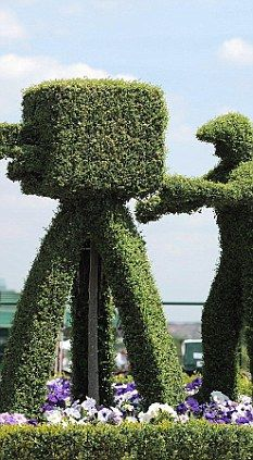 topiary hedge mazes | ... behind our privet: HEDGE BRITANNIA BY HUGH BARKER | Mail Online